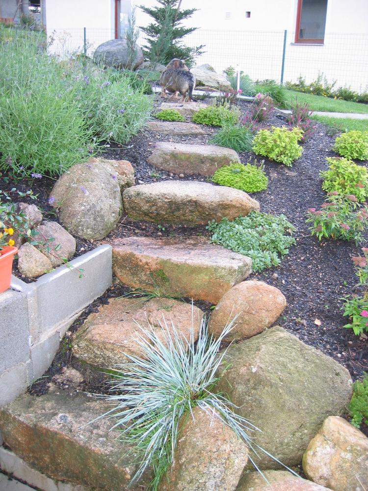 Zahrady1 032